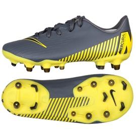 Fotbalová obuv Nike Mercurial Vapor 12 Akademie Ps FG / MG Jr AH7349-070 grafitu šedá