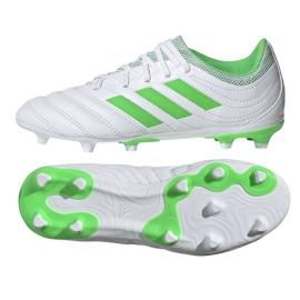 Kopačky adidas Copa 19,3 Fg Jr D98081