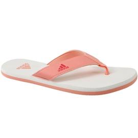 Oranžový Žabky adidas Beach Thong 2 Jr CP9379