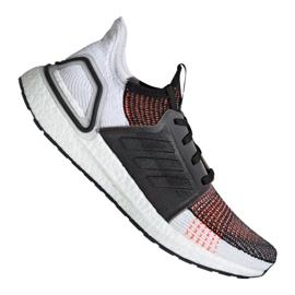 Vícebarevný Běžecká obuv adidas UltraBoost 19 m M G27519