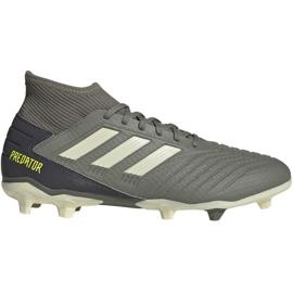 Fotbalová obuv Adidas Predator 19,3 Fg M EF8208 šedá šedá / stříbrná