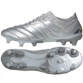 Fotbalová obuv Adidas Copa 20,1 Fg M EF8316 stříbro