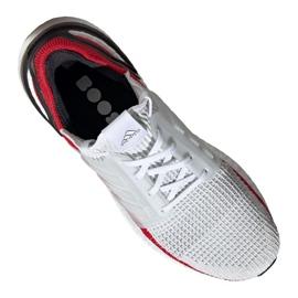 Běžecká obuv adidas UltraBoost 19 M EF1341 1